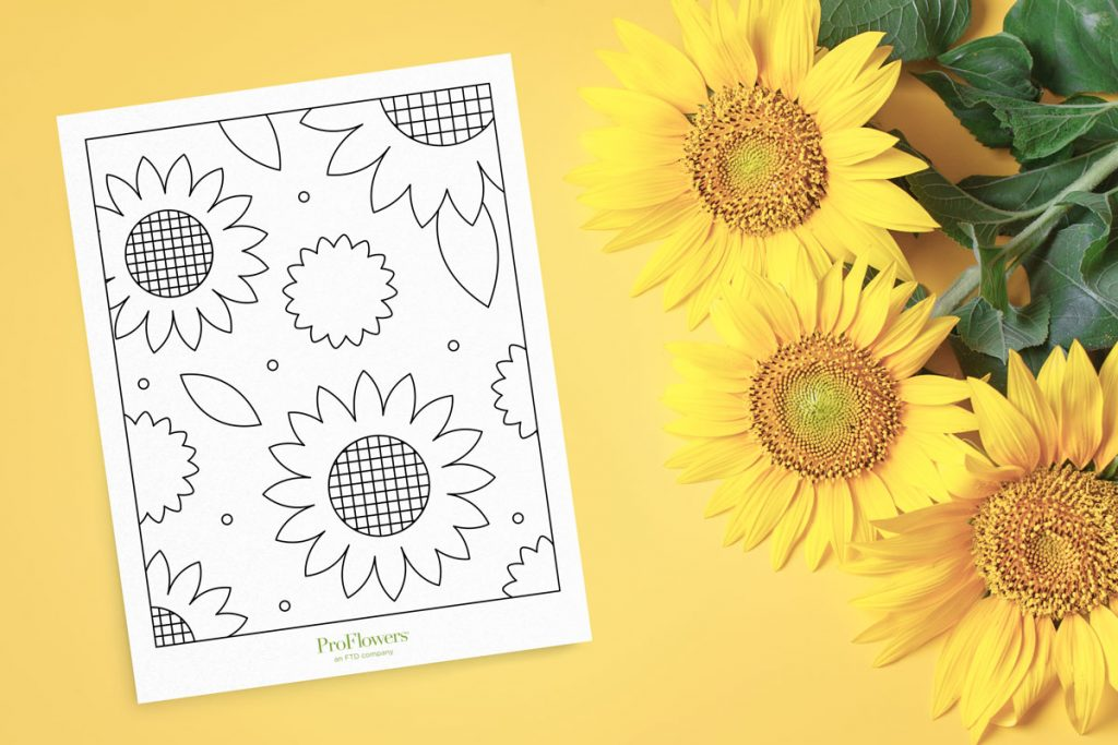 sunflowers on yellow background with simple coloring page