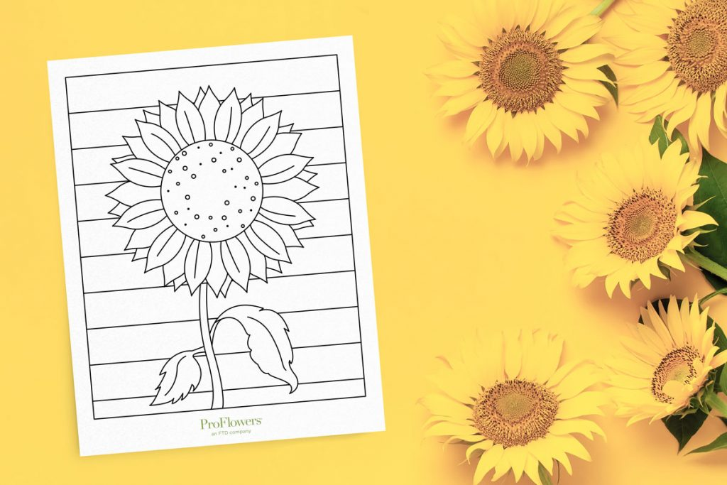 sunflowers on yellow background with intricate coloring page