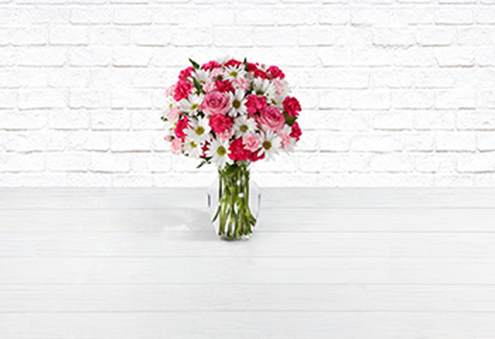 pink and white daisies in vase on white background