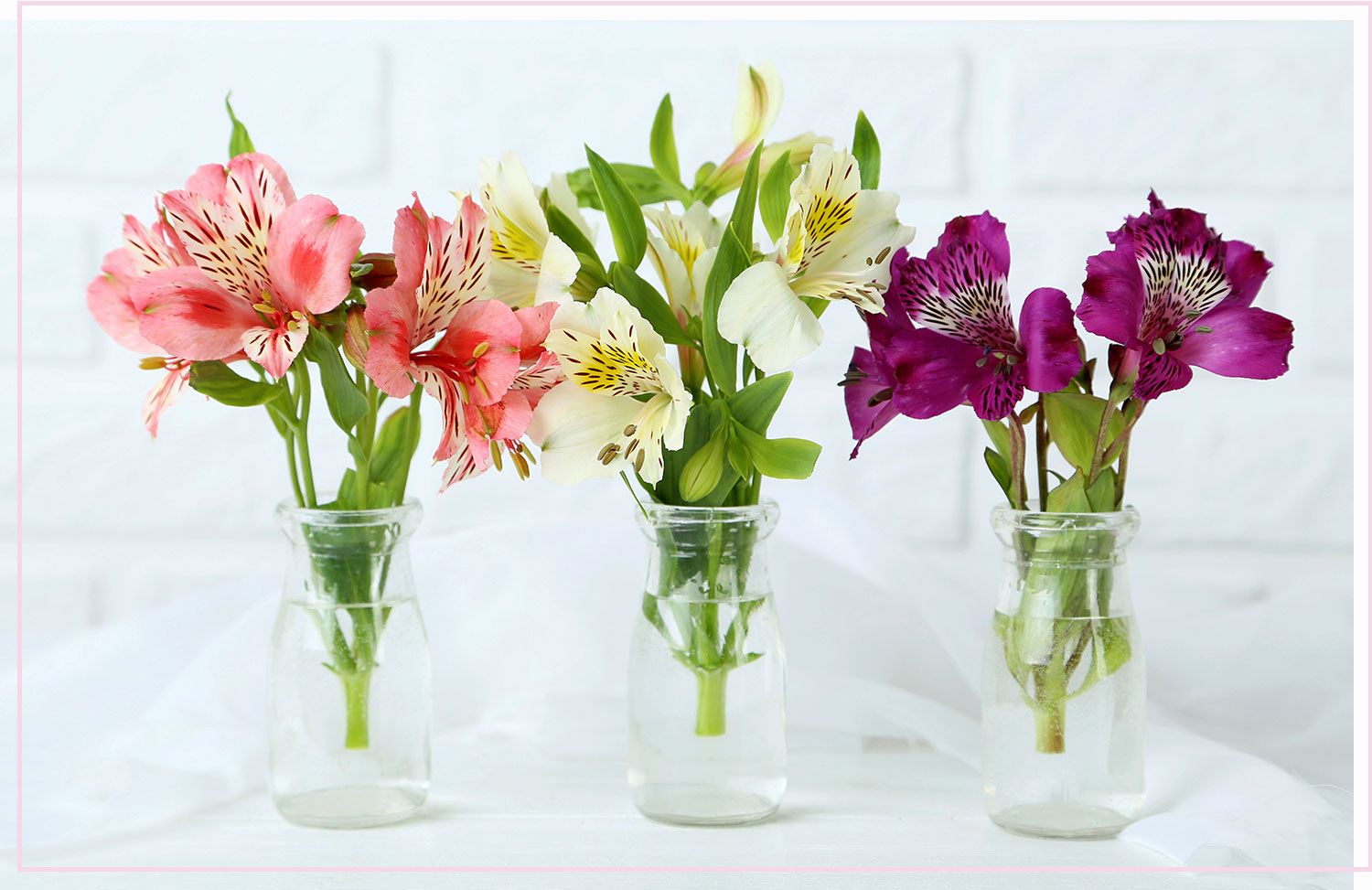 photo of three bouquets of flowers